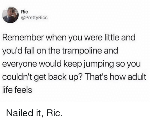 Adult Life: Ric  @PrettyRicc  Remember when you were little and  you'd fall on the trampoline and  everyone would keep jumping so you  couldn't get back up? That's how adult  life feels Nailed it, Ric.
