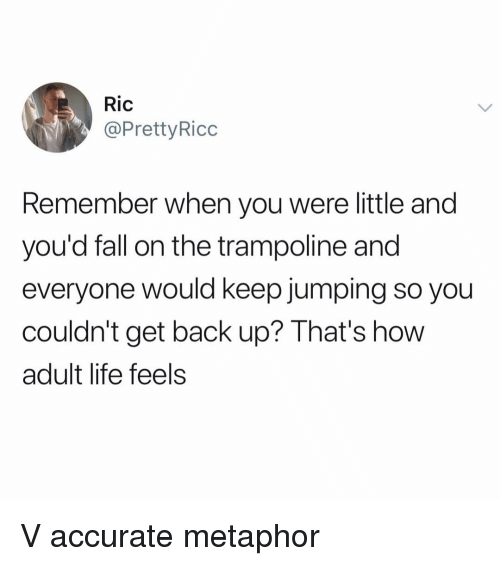 Adult Life: Ric  @PrettyRicc  Remember when you were little and  you'd fall on the trampoline and  everyone would keep jumping so you  couldn't get back up? That's how  adult life feels V accurate metaphor
