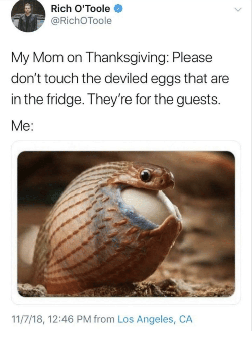 Thanksgiving, Los Angeles, and Mom: Rich O'Toole  @RichOToole  My Mom on Thanksgiving: Please  don't touch the deviled eggs that are  in the fridge. They're for the guests.  Me:  11/7/18, 12:46 PM from Los Angeles, CA