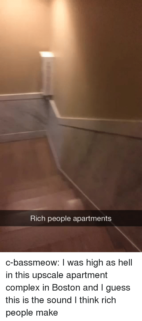 Complex, Tumblr, and Blog: Rich people apartments c-bassmeow:  I was high as hell in this upscale apartment  complex in Boston and I guess this is the sound I think rich people make