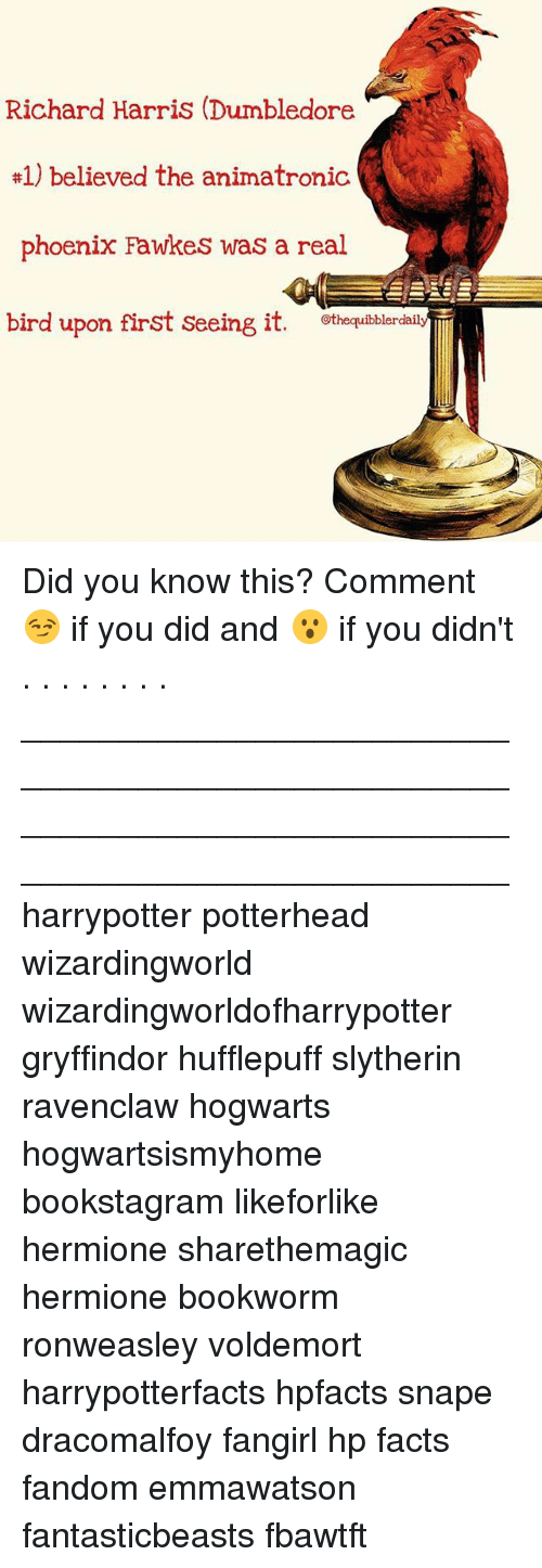 richard harris: Richard Harris (Dumbledore  #1) believed the animatronic  phoenix Fawkes was a real  bird upon first seeing it  othequibblerdaily Did you know this? Comment 😏 if you did and 😮 if you didn't . . . . . . . . __________________________________________________ __________________________________________________ harrypotter potterhead wizardingworld wizardingworldofharrypotter gryffindor hufflepuff slytherin ravenclaw hogwarts hogwartsismyhome bookstagram likeforlike hermione sharethemagic hermione bookworm ronweasley voldemort harrypotterfacts hpfacts snape dracomalfoy fangirl hp facts fandom emmawatson fantasticbeasts fbawtft