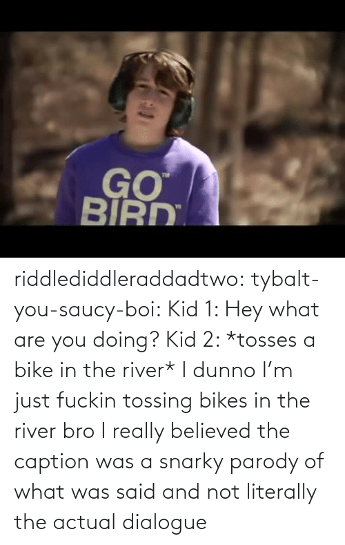 caption: riddlediddleraddadtwo:  tybalt-you-saucy-boi:  Kid 1: Hey what are you doing? Kid 2: *tosses a bike in the river* I dunno I'm just fuckin tossing bikes in the river bro    I really believed the caption was a snarky parody of what was said and not literally the actual dialogue