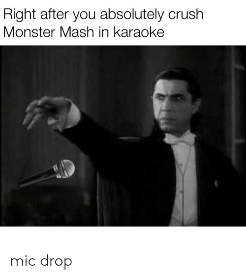 Karaoke: Right after you absolutely crush  Monster Mash in karaoke mic drop