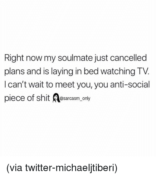Funny, Memes, and Shit: Right now my soulmate just cancelled  plans and is laying in bed watching TV.  l can't wait to meet you, you anti-social  piec  e of shit @sarcasm_only (via twitter-michaeljtiberi)