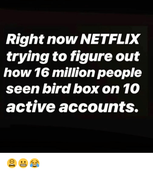 Netflix, Hood, and How: Right now NETFLIX  trying to figure out  how 16 million people  seen bird box on 10  active accounts. 😩😬😂