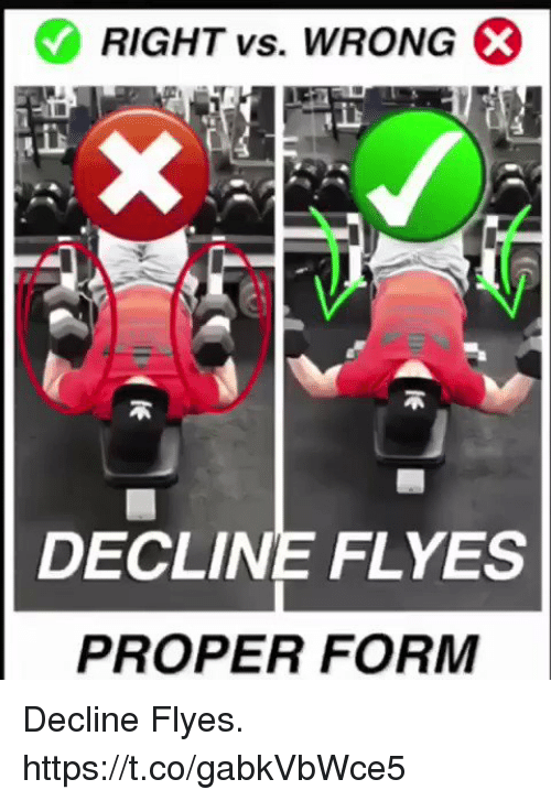 Memes, 🤖, and Right: RIGHT vs. WRONG  DECLINE FLYES  PROPER FORM Decline Flyes. https://t.co/gabkVbWce5
