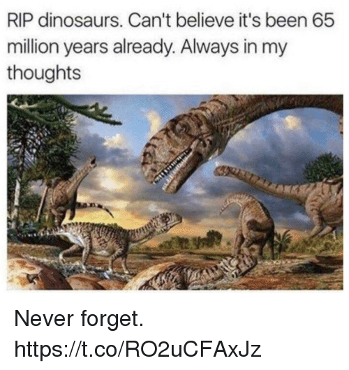Funny, Dinosaurs, and Never: RIP dinosaurs. Can't believe it's been 65  million years already. Always in my  thoughts Never forget. https://t.co/RO2uCFAxJz