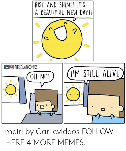 coh: RISE AND SHINE! IT'S  A BEAUTIFUL NEW DAY!!  A THESQUARECO MICS  COH NO(I'M STILL ALIVE meirl by Garlicvideos FOLLOW HERE 4 MORE MEMES.