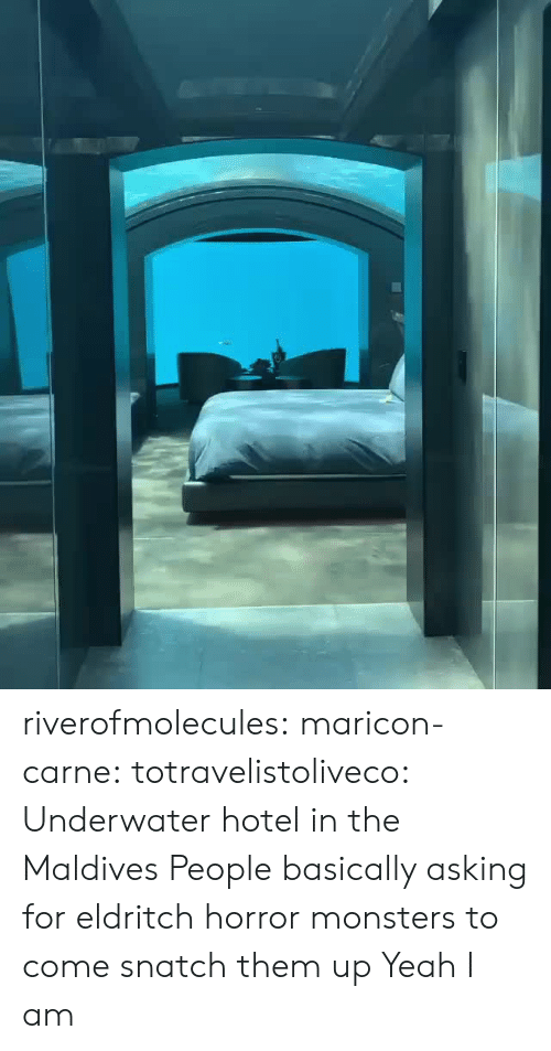 Tumblr, Yeah, and Blog: riverofmolecules:  maricon-carne:   totravelistoliveco:  Underwater hotel in the Maldives  People basically asking for eldritch horror monsters to come snatch them up    Yeah I am