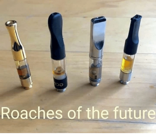 Future, Memes, and 🤖: Roaches of the future