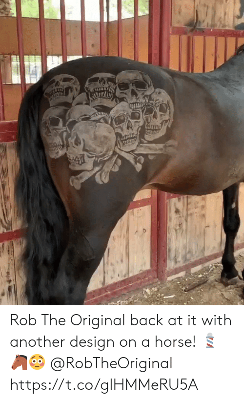 Horse, Design, and Back: Rob The Original back at it with another design on a horse! 💈🐴😳 @RobTheOriginal https://t.co/gIHMMeRU5A