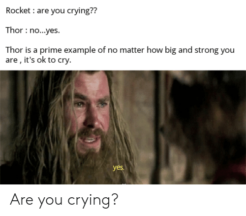 No Yes: Rocket are you crying??  Thor no...yes.  Thor is a prime example of no matter how big and strong you  are , it's ok to cry.  yes. Are you crying?