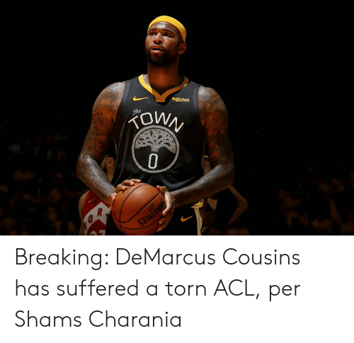 acl: Rokuten  OWN  Jhe  SPALDING Breaking: DeMarcus Cousins has suffered a torn ACL, per Shams Charania
