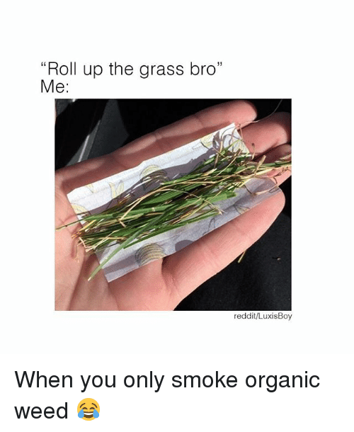 """Grasse: """"Roll up the grass bro""""  Me:  L0  reddit/LuxisBoy When you only smoke organic weed 😂"""