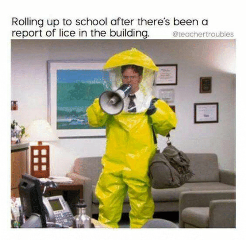 Lice: Rolling up to school after there's been a  report of lice in the building.  teachertroubles
