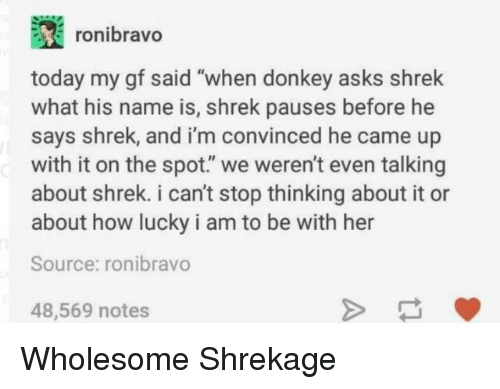 """Donkey, Shrek, and Today: ronibravo  today my gf said """"when donkey asks shrek  what his name is, shrek pauses before he  says shrek, and i'm convinced he came up  with it on the spot."""" we weren't even talking  about shrek. i can't stop thinking about it or  about how lucky i am to be with her  Source: ronibravo  48,569 notes Wholesome Shrekage"""