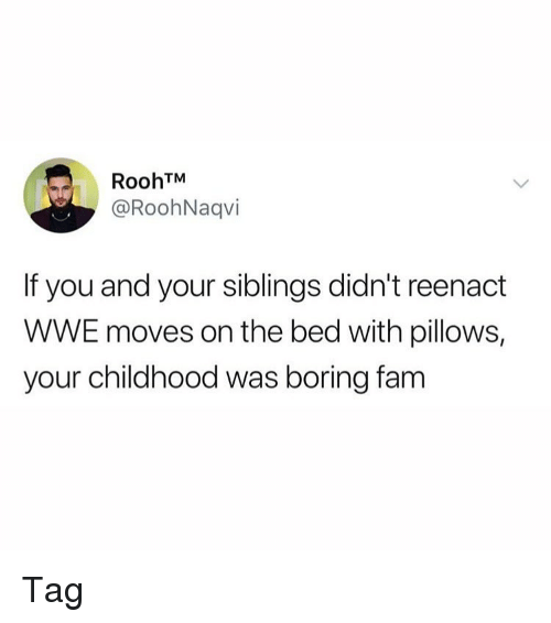 Fam, Memes, and World Wrestling Entertainment: RoohTM  @RoohNaqvi  If you and your siblings didn't reenact  WWE moves on the bed with pillows,  your childhood was boring fam Tag
