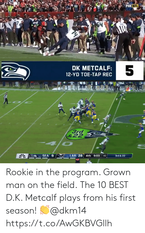 Metcalf: Rookie in the program. Grown man on the field. The 10 BEST D.K. Metcalf plays from his first season! 👏@dkm14 https://t.co/AwGKBVGllh
