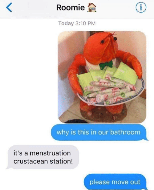 roomie: Roomie  Today 3:10 PM  why is this in our bathroom  it's a menstruation  crustacean station!  please move out
