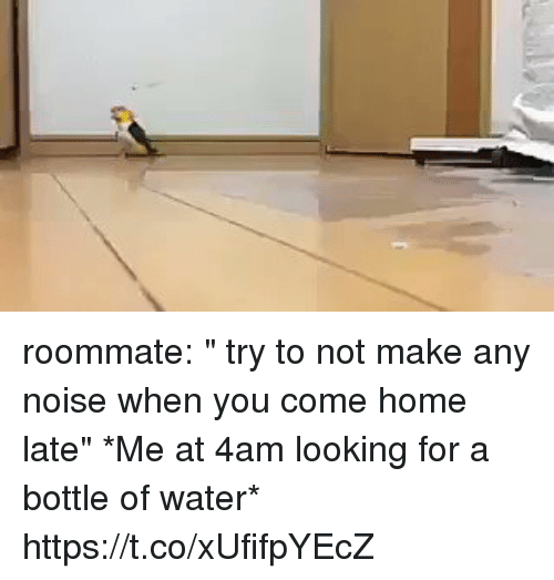 """Roommate, Home, and Water: roommate: """" try to not make any noise when you come home late""""   *Me at 4am looking for a bottle of water* https://t.co/xUfifpYEcZ"""