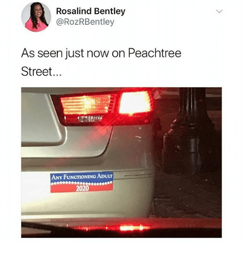 Memes, Bentley, and 🤖: Rosalind Bentley  @RozRBentley  As seen just now on Peachtree  Street...  ANY FUNCTIONING ADULT  2020