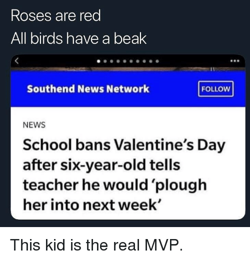 Memes, News, and School: Roses are red  All birds have a beak  Southend News letwork OiDN  FOLLOW  NEWS  School bans Valentine's Day  after six-year-old tells  teacher he would 'plough  her into next week' This kid is the real MVP.