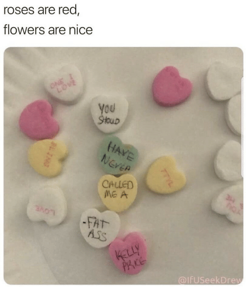 Ass, Fat Ass, and Flowers: roses are red,  flowers are nice  ou  CALLED  FAT-  Ass  Ace  alfuseekDrew