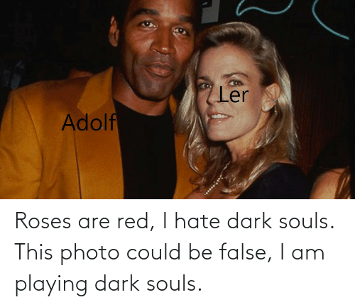 Roses Are: Roses are red, I hate dark souls. This photo could be false, I am playing dark souls.