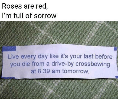 Drive By, Drive, and Live: Roses are red,  i'm full of sorrow  Live every day like it's your last before  you die from a drive-by crossbowing  at 8:39 am tomorrow