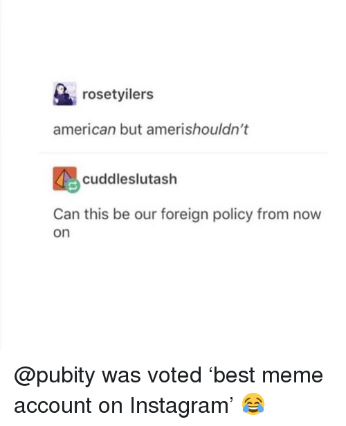 Instagram, Meme, and Memes: rosetyilers  american but amerishouldn't  cuddleslutash  Can this be our foreign policy from now  on @pubity was voted 'best meme account on Instagram' 😂