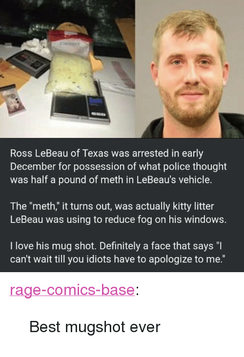 """Rage Comics: Ross LeBeau of Texas was arrested in early  December for possession of what police thought  was half a pound of meth in LeBeau's vehicle.  The """"meth,"""" it turns out, was actually kitty litter  LeBeau was using to reduce fog on his windows.  I love his mug shot. Definitely a face that says """"I  can't wait till you idiots have to apologize to me."""" <p><a href=""""http://ragecomicsbase.com/post/163252143887/best-mugshot-ever"""" class=""""tumblr_blog"""">rage-comics-base</a>:</p>  <blockquote><p>Best mugshot ever</p></blockquote>"""