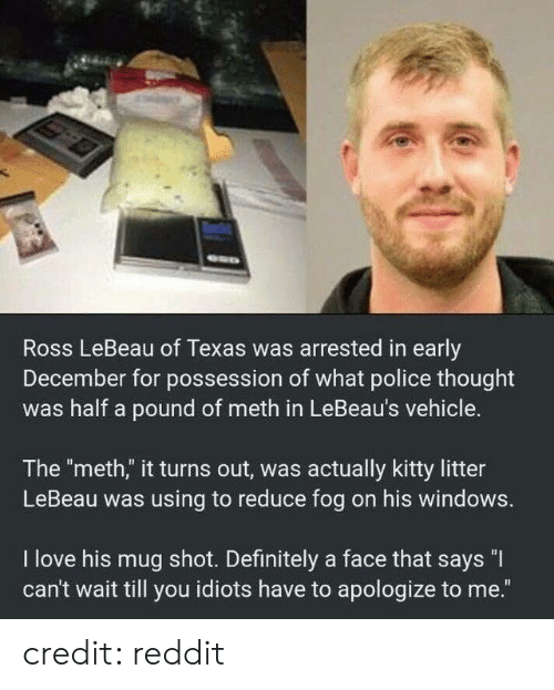"Dank, Definitely, and Love: Ross LeBeau of Texas was arrested in early  December for possession of what police thought  was half a pound of meth in LeBeau's vehicle.  The ""meth,"" it turns out, was actually kitty litter  LeBeau was using to reduce fog on his windows.  I love his mug shot. Definitely a face that says ""I  can't wait till you idiots have to apologize to me."" credit: reddit"