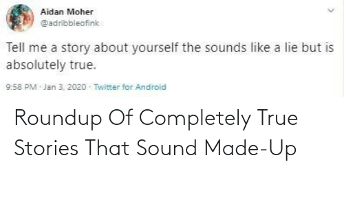 completely: Roundup Of Completely True Stories That Sound Made-Up