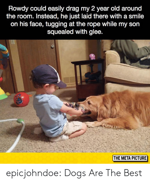 Glee: Rowdy could easily drag my 2 year old around  the room. Instead, he just laid there with a smile  on his face, tugging at the rope while my son  squealed with glee  THE META PICTURE epicjohndoe:  Dogs Are The Best