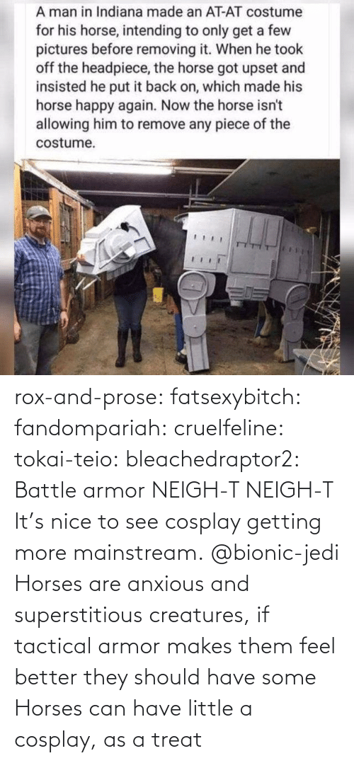 treat: rox-and-prose:  fatsexybitch:   fandompariah:  cruelfeline:  tokai-teio:  bleachedraptor2: Battle armor    NEIGH-T  NEIGH-T    It's nice to see cosplay getting more mainstream.    @bionic-jedi     Horses are anxious and superstitious creatures, if tactical armor makes them feel better they should have some    Horses can have little a cosplay, as a treat