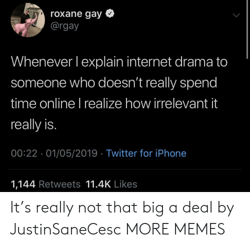 irrelevant: roxane gay *  @rgay  Whenever lexplain internet drama to  someone who doesn't really spend  time online I realize how irrelevant it  really is.  00:22 01/05/2019 Twitter for iPhone  1,144 Retweets 11.4K Likes It's really not that big a deal by JustinSaneCesc MORE MEMES