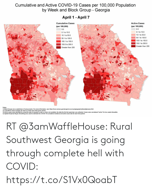 Georgia: RT @3amWaffleHouse: Rural Southwest Georgia is going through complete hell with COVID: https://t.co/S1Vx0QoabT