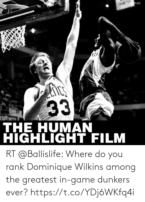 Wilkins: RT @Ballislife: Where do you rank Dominique Wilkins among the greatest in-game dunkers ever? https://t.co/YDj6WKfq4i