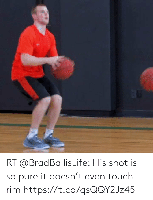touch: RT @BradBallisLife: His shot is so pure it doesn't even touch rim   https://t.co/qsQQY2Jz45