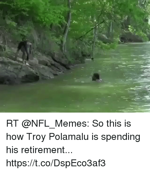 Football, Memes, and Nfl: RT @NFL_Memes: So this is how Troy Polamalu is spending his retirement... https://t.co/DspEco3af3