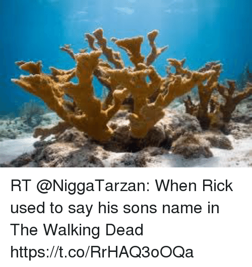 Blackpeopletwitter, The Walking Dead, and Walking Dead: RT @NiggaTarzan: When Rick used to say his sons name in The Walking Dead https://t.co/RrHAQ3oOQa