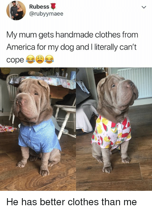 America, Clothes, and Relatable: Rubess  @rubyymaee  My mum gets handmade clothes from  America for my dog and I literally can't  cope He has better clothes than me