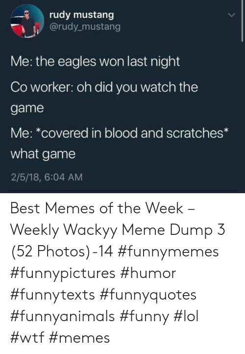 Philadelphia Eagles, Funny, and Lol: rudy mustang  @rudy mustang  Me: the eagles won last night  Co worker: oh did you watch the  game  Me: *covered in blood and scratches  what game  2/5/18, 6:04 AM Best Memes of the Week – Weekly Wackyy Meme Dump 3 (52 Photos)-14 #funnymemes #funnypictures #humor #funnytexts #funnyquotes #funnyanimals #funny #lol #wtf #memes