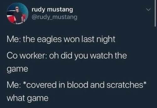 Worker: rudy mustang  @rudy_mustang  Me: the eagles won last night  Co worker: oh did you watch the  game  Me: *covered in blood and scratches*  what game
