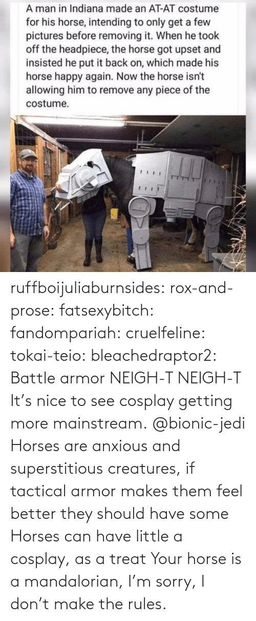 feel better: ruffboijuliaburnsides:  rox-and-prose:  fatsexybitch:   fandompariah:  cruelfeline:  tokai-teio:  bleachedraptor2: Battle armor    NEIGH-T  NEIGH-T    It's nice to see cosplay getting more mainstream.    @bionic-jedi     Horses are anxious and superstitious creatures, if tactical armor makes them feel better they should have some    Horses can have little a cosplay, as a treat  Your horse is a mandalorian, I'm sorry, I don't make the rules.