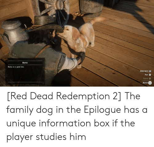 Family, Good, and Information: RUFUS  Rufus is a good boy.  HIDE INFO R1  PAT O  SCOLD  RUFUS(L2 [Red Dead Redemption 2] The family dog in the Epilogue has a unique information box if the player studies him