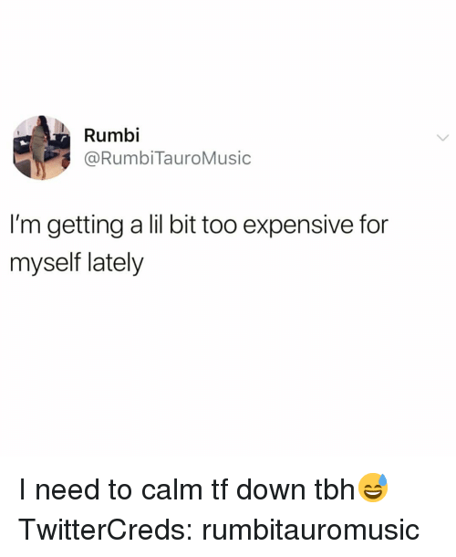 Funny, Tbh, and Down: Rumbi  @RumbiTauroMusic  I'm getting a lil bit too expensive for  myself lately I need to calm tf down tbh😅 TwitterCreds: rumbitauromusic
