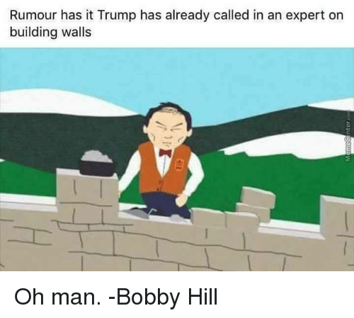 Bobby Hill: Rumour has it Trump has already called in an expert on  building walls Oh man.   -Bobby Hill