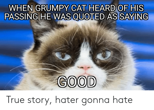 Reddit, True, and Good: RUMPY CAT HEARD OF HIS  WHEN G  PASSING HE WAS QUOTED AS SAYING  GOOD True story, hater gonna hate