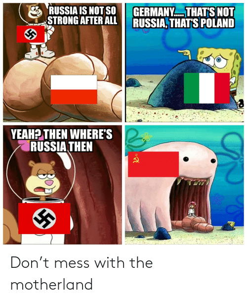 Russia: RUSSIA IS NOT SO  STRONG AFTER ALL  GERMANY. THAT'S NOT  RUSSIA, THAT'S POLAND  YEAH? THEN WHERE'S  RUSSIA THEN Don't mess with the motherland